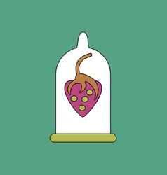 Flat icon design collection strawberry condom vector