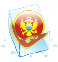 frozen button flag of montenegro vector image vector image