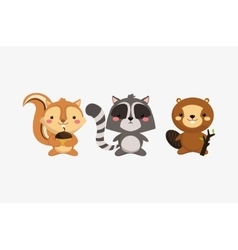 Squirrel raccoon and beaver icons image vector