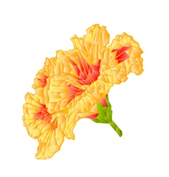 Yellow hibiscus tropical flowers mosaic polygons vector