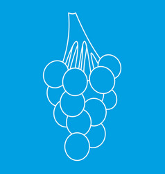 Grape bunch icon outline style vector