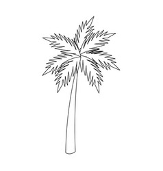 palm tropical tree beach plant image vector image vector image