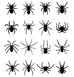 Silhouettes of spiders 2 vector