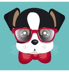 Lovely doggy hispter red glasses and bow vector