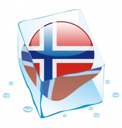 Frozen button flag of norway vector