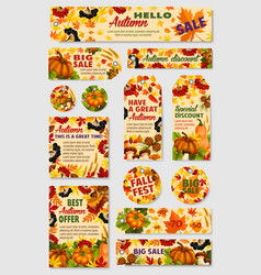 autumn sale tag discount offer label and card set vector image vector image