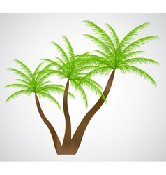 Palm in the sunset EPS 10 vector image