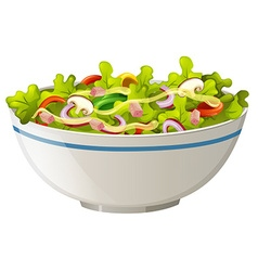 Bowl of green salad vector image