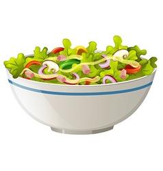 Bowl of green salad vector