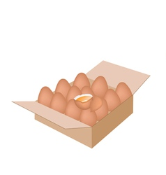 Fresh Chicken Eggs in A Shipping Box vector image