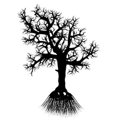 Silhouette tree with root vector