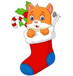 Cartoon animal cat in the sock christmas vector image