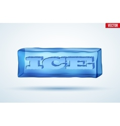 Frozen cube with cutting word Ice vector image