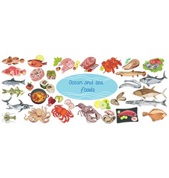 Colorful drawing marine food collection vector