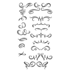 Calligraphic strokes vector