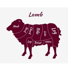 Cuts of Lamb or Mutton Diagram vector image
