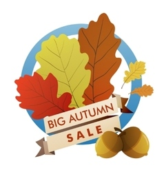 big autumn sale vector image vector image