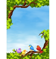 Birds on the branch at daytime vector