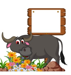 Cute buffalo cartoon posing with blank board for y vector