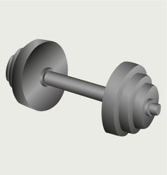 Dumbbell weight vector image vector image