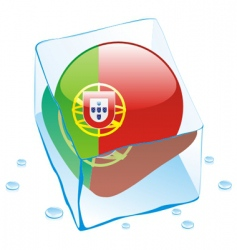 frozen button flag of portugal vector image vector image