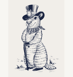 Groundhog day marmot in hat laid his paws on vector