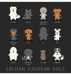 Set of eastern european dogs  eps10 format vector