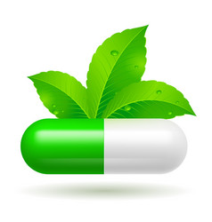 Organic capsule with green leaves on white vector
