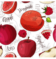 Seamless pattern with fruits apple and vector