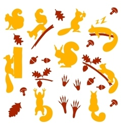 Set of orange furry squirrels with nuts vector