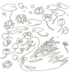 Swan and water plants vector