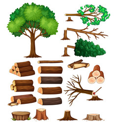 tree and stump trees vector image