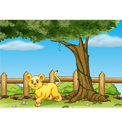 A young tiger under a big tree vector