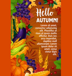 autumn or hello fall poster of foliage vector image vector image
