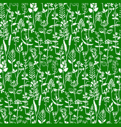 Herbal seamless pattern vector