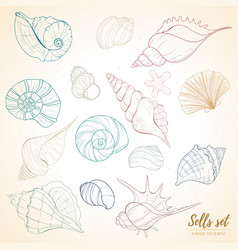 Seashell paradise holiday marine set vector
