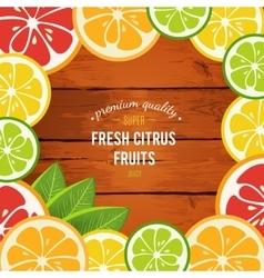 Grapefruit lime lemon and orange with mint vector