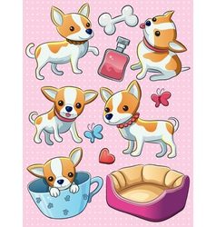 Chihuahua Puppy vector image vector image