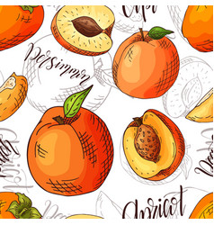 Seamless pattern with fruits apricot and vector