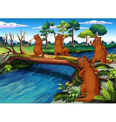 Four wild animals at the riverside vector image