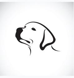 A dog headlabrador retriever on white vector