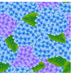 blue and purple hygrangea flower seamless vector image