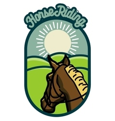 Color vintage Horse riding emblems vector image