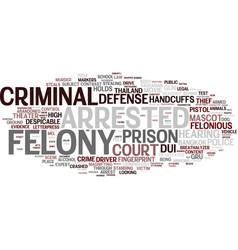 felony word cloud concept vector image vector image