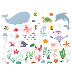 sea animals and water plants vector image vector image