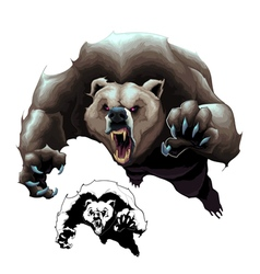 Angry brown bear vector
