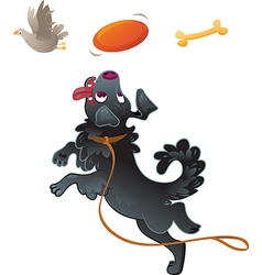 Dog Catching Disc in Jump vector image vector image