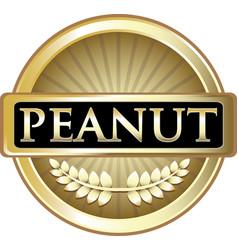 Peanut gold icon vector