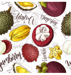 Seamless pattern with fruits durian and vector