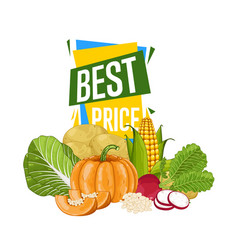 Best price discount poster with fresh vegetable vector